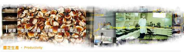 靈芝是什麼?簡單而言,它和食用的香菇一樣,都屬於菌類,但是卻與一般菇類不同,靈芝的成分十分複雜。目前已知的成分包括:靈芝酸、多醣體、蛋白質,以及核酸類的化合物等;舉凡人體所需的碳水化合物、蛋白質、維生素、礦物質、脂質、纖維素、以及各項胺基酸。 靈芝是典型的腐生型真菌,生長所需的養分,可以由富含纖維素和木質素的植物性廢棄物來提供,因此栽培靈芝的過程是資源回收的具體表現。現代化的靈芝生產過程不需開墾森林破壞水土保持,也不與作物競爭有限的耕地,在提倡環境保護與珍惜資源的國家開發計劃中,靈芝栽培是落實資源永續利用的綠色產業
